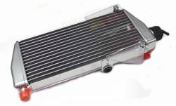 RADIATOR ASSEMBLY ROTAX 125 PRE 2015 product image
