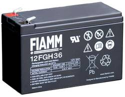 BATTERY 12 VOLT FIAMM product image