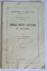 SMALL FRUIT CULTURE IN VIC product image